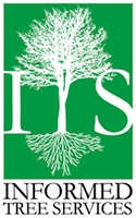 informed-tree-services