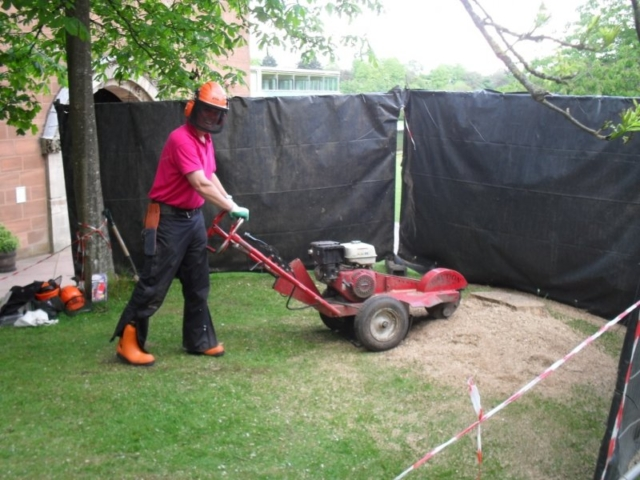 Stump grinder training